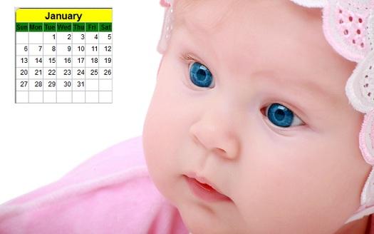baby desktop calendar 2013 cute baby new year calendar rajesh1128